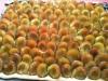 pflaumenkuchen2