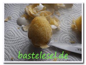 Kucheneier5