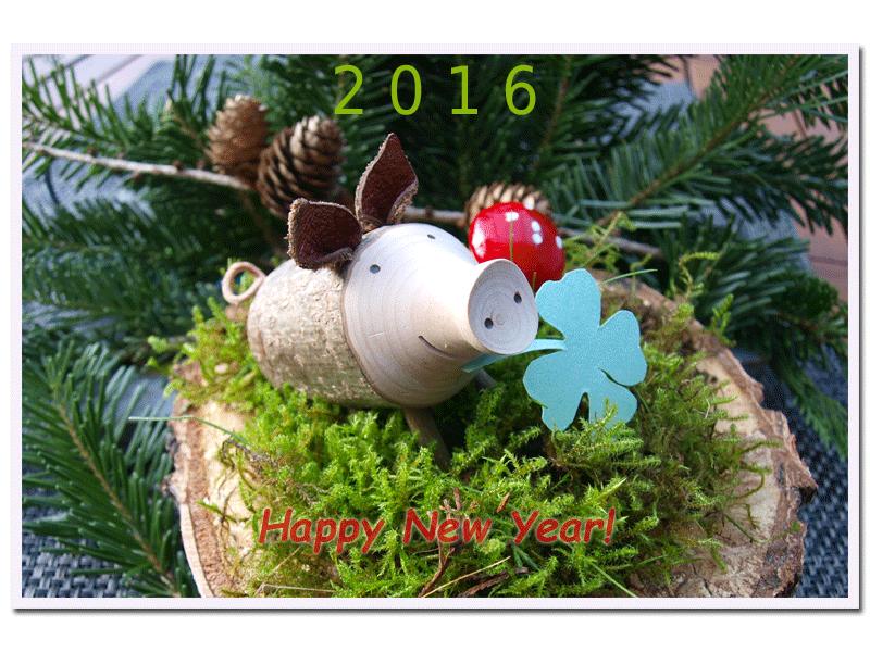 Silvester2015-2